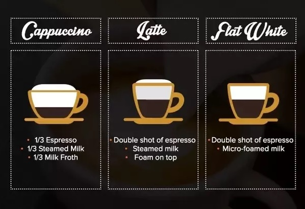 flat white infographic